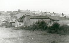 avda-llano-ca-1976.jpg