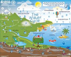 We love this interactive water cycle chart from USGS!  You can select the right level for your students - beginner, intermediate, or advanced.  When they hover over each word, additional information appears.