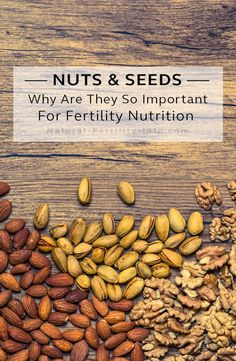 Nuts and seeds are some of the most nutrient dense and delicious foods on earth. They are an important part of fertility nutrition, pregnancy nutrition and beyond because they supply the body with ample fiber, protein, minerals and essential fatty acids. Foods To Boost Fertility, Fertility Diet, Natural Fertility Info, Pregnancy Nutrition, Pregnancy Health, Pregnancy Test, In Vitro Fertilization, Pcos Diet, Essential Fatty Acids