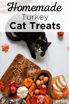 Try making these homemade turkey cat treats for your pet this Thanksgiving. Homemade Cat Food, Cat Diet, Tidy Cats, Chicken Treats, Animal Nutrition, Wild Bird Food, Leftover Turkey, Pet Treats, Christmas Cats