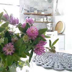 Keittiö Table Decorations, Plants, Furniture, Home Decor, Decoration Home, Room Decor, Home Furniture, Plant, Interior Design