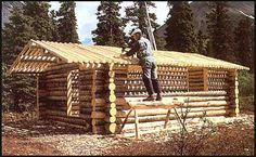 Dick Building his  Cabin ...Working on the Roof ...