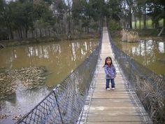 Ticonderoga Farms, Chantilly