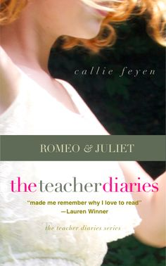 The Teacher Diaires Memoir and Education stories