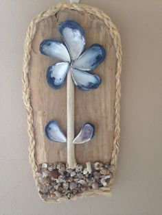Shell Flower on driftwood