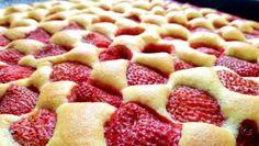 Vynikající MARGOT buchta s čokoládovým pudinkem – RECETIMA Strawberry Sweets, Czech Recipes, Low Carb Pizza, Pudding Desserts, Desert Recipes, Relleno, Let Them Eat Cake, Yummy Cakes, Sweet Tooth