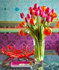 pink and orange tulips... love the turquoise in the back - je veux trop ces couleurs la pour ma cours!!! Wow!!