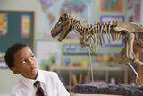 http://dinosaurs.about.com/od/dinosaurbasics/a/dinosaur-facts.htm