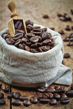 Coffee beans on Behance