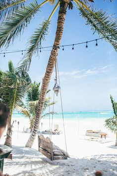 How pretty is this vacation spot in Tulum? This beach is so pretty, we love the sun, sea, and palm trees!