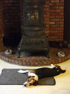 """Woodstove Beagle - LOVE a hound that lays by the fire!!!!  Just says """"Home"""""""