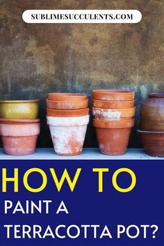 Here is how to paint a terracotta pot. Terracotta pots are one of the most popular types of containers for succulents. They're famously inexpensive and their classic earthy red coloring works well with nearly any color palette. Planting your succulents in vibrant containers is a fun way to add a splash of color to your garden, so why not spice up your boring terracotta pots with a coat of paint? Check this pin! #terracotapot #terracotta #pots Ceramic Pots, Terracotta Pots, Glazed Ceramic, Succulent Care, Succulent Gardening, Succulents In Containers, Cacti And Succulents, Types Of Painting, Lawn And Garden