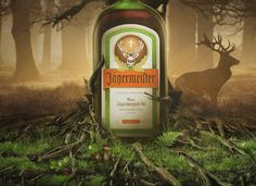 jagermeister woods - Google Search