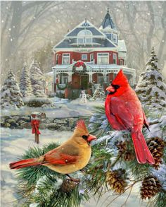 Cardinal Holiday Retreat  ~ 1000 Piece Jigsaw Puzzle