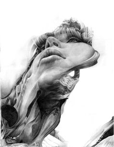 Illustration  |  I find this just mesmerizing. I can draw a bit... but this is the kind of talent I could only wish for. Beautiful composition and expert pencil work.