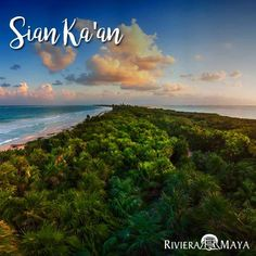 Yucatan Peninsula Adventure, join us on the 11 day adventure and explore the most beautiful sites of the Yucatan Peninsula and Riviera Maya. Book now! Cozumel, Riviera Maya, Tulum, Puerto Aventuras, Mexico Tours, Beautiful Sites, Historical Sites, North America, Tourism