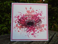 Uniko studio's Gerbera meets Stampin Up's Gorgeous Grunge! Craft-E-Place Quick Cards, Diy Cards, Studio Cards, Gerbera, Distress Ink, Clear Stamps, Cardmaking, Florals, Stampin Up