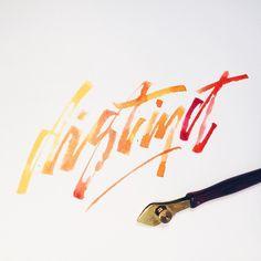 Distinct.  ____________________________ #makedaily #calligraphy #calligraffiti #calligritype #typographyinspired #script #inking #ink #lettering #rulingwriter #handstyles #thedailytype #caligrafia #graffiti #showusyourtype #graphicdesign #goodtype #typedaily #typespire #handmadefont #art