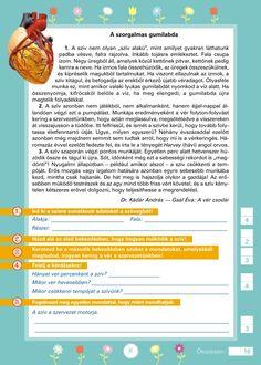Szövegértést fejlesztő gyakorlatok 3.o. Kids Learning, Grammar, Literature, Printables, Education, Dyslexia, Languages, Literatura, Print Templates