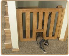 Lovely Cat Gate For Stairs #5 Cat Gate With Pet Door   Newsonair.org