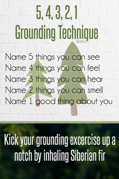 Try using Siberian fir during a grounding session. When you are overwhelmed with anxious feelings, it's good to try a grounding exercise. Try thinking of five things you can see, four things you can feel, three things you can hear, two things you can smel