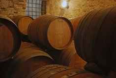 Il Veneto ha un cuore rosso #vinitaly2014 #botti #wine