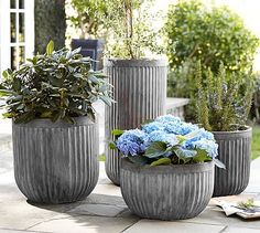 Concrete Fluted Planters, $99-$169, Pottery Barn. Dahlia says that concrete is a material good for traditional homes.