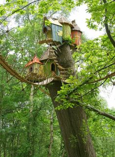 I think these are birdhouses made to look like mini tree-houses. Either way, I like it.
