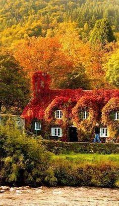 Outono no País de Gales, Reino Unido.