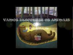 Animais que hibernam - YouTube