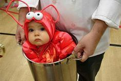 Baby costume omg so cute I could just eat te baby up! ;)