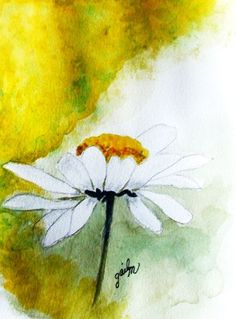 White Daisy - Watercolor