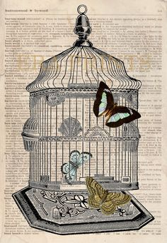 Butterflies and a Birdcage Vintage Dictionary Page by EraPrints, $9.00