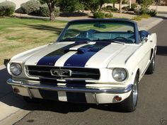 1965 Ford Mustang Pictures: See 571 pics for 1965 Ford Mustang. Browse interior and exterior photos for 1965 Ford Mustang. 2018 Mustang Gt, Ford Mustang 1965, Ford Mustang Shelby Cobra, Ford Mustang Convertible, Mustang Cars, Car Ford, Ford Gt, Ford Mustangs, Vintage Cars