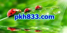 (실시간 카지노)PKH833.COM(실시간 카지노)(실시간 카지노)PKH833.COM(실시간 카지노)(실시간 카지노)PKH833.COM(실시간 카지노)(실시간 카지노)PKH833.COM(실시간 카지노)