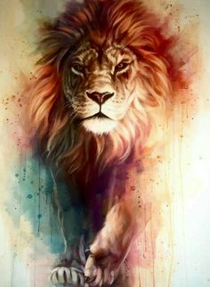 Gorgeous Lion painting with awesome depth and color. Lion of Judah painting. Amazing Drawings, Cool Drawings, Amazing Art, Amazing Things, Amazing Tattoos, Pretty Tattoos, Lion Painting, Painting & Drawing, Lion Drawing