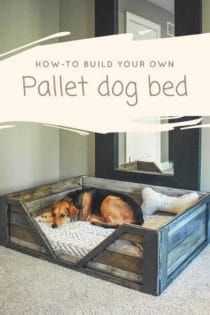 Pallet Projects Pallet Dog Bed: Discover how to build your own Pallet Dog Bed! This is a perfect weekend project and requires two to three - Pallet dog bed made from two repurposed pallets. Make your own pallet dog bed with this free PDF guide Diy Pallet Projects, Pallet Ideas, Weekend Projects, Home Projects, Diy Lit, 1001 Palettes, Pallet Dog Beds, Dog Bed From Pallets, Pallet Dog House