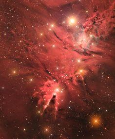 Рассеянное звёздное скопление Снежинки или NGC 2264, связанное с туманностью, расположенное в созвездии Единорога.