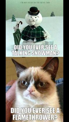 Grumpy cat, grumpy cat meme, grumpy cat humor, grumpy cat quotes, grumpy cat funny …For the best humour and hilarious jokes visit www. Grumpy Cat Quotes, Funny Grumpy Cat Memes, Cat Jokes, Funny Animal Memes, Cute Funny Animals, Funny Animal Pictures, Funny Cats, Funny Quotes, Funny Memes