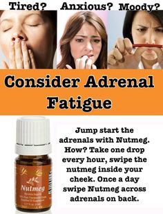 Adrenal Fatigue To purchase or become a member, go to: www.youngliving.com (select your country). Please use #1604461. Angela Sternreich