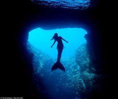 Real Life Mermaids, Mermaids And Mermen, Pretty Mermaids, Mermaid Fairy, Mermaid Tale, Mermaid Lagoon, Mythical Creatures, Sea Creatures, Atlantis