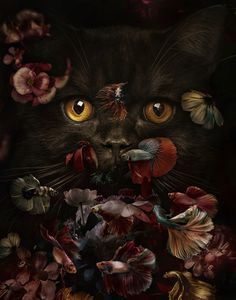 Delighful Worlds Of Fantasy and Dreams by Marcel Van Luit Most Beautiful Animals, Beautiful Cats, Beautiful Creatures, Tier Wallpaper, Animal Wallpaper, Jolie Photo, Cute Baby Animals, Cute Wallpapers, Cat Art