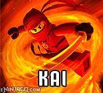 Kai Lego Ninjago, Ninjago Games, Ninjago Kai, Skeleton Lords, Lightning Dragon, Ninja Outfit, Ice Dragon, Ninja Weapons, Tigger