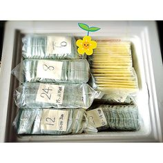 Pin for Later: 9 Supersimple Ways to Organize Your Breast Milk Stash In Storage Bags With Post-Its Storing Breastmilk In Freezer, Freezing Breastmilk, Breastmilk Storage Bags, Store Breastmilk, Breastfeeding Storage, Breastfeeding And Pumping, Brest Milk Storage