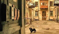 Private Guided Tour of Odessa Hidden Courtyards Get insider's tips about everyday life in Odessa, Ukraine, its customs and traditions. If you have already seen all the main sights of the city, this tour will show you some secret parts of Odessa.... #Event #Culture  #Tour #Backpackers #Tickets #Entertainment