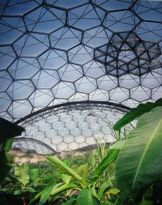 The Eden project - Cornwall, U.K.