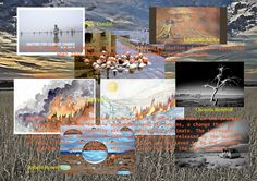 Acknowledgements: Background image: D Owen Issac Cordal: http://inhabitat.com/isaac-cordals-incredible-tiny-sculptures-offer-a-chilling-view-of-climate-change/ Jill Pelto: http://www.pbs.org/newshour/art/artist-captures-climate-change-in-7-stunning-watercolors/ Jabulami Africa: https://www.iied.org/uganda-art-answer-communicating-about-climate-change Osceola Refetoff: https://www.kcet.org/shows/artbound/high-dry-the-salton-sea-and-the-search-for-solutions-to-the-wests-problems Robert Rosenb