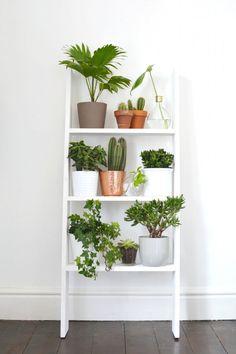 Decorating Apartment Minimalist Shelves - Indoor Plant Ideas That& Instantly Breathe Life Into . Retro Home Decor, Diy Home Decor, Room Decor, Modern Decor, Home Decoration, Home Decor With Plants, Bedroom Plants Decor, Urban Home Decor, Modern Design