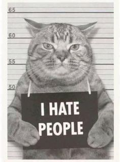 I hate people! Animals And Pets, Funny Animals, Cute Animals, Crazy Cat Lady, Crazy Cats, I Love Cats, Cool Cats, Cat Memes, Funny Memes