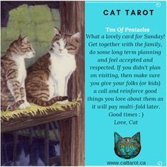 Monthly readings on my YouTube channel: www.youtube.com/c/cattarot Book your reading: www.cattarot.ca Love, Cat #tarot #tarotcards Tarot Cards, Folk, Channel, How To Plan, Feelings, Reading, Cats, Youtube, Animals